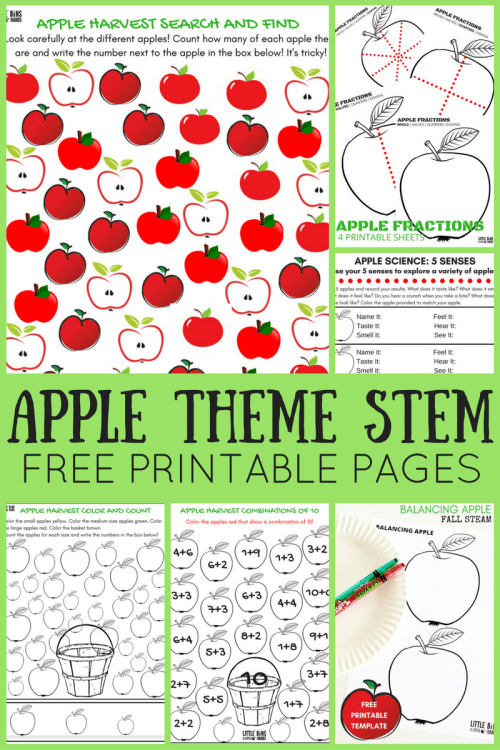 small resolution of Apple Worksheets For Preschool   Little Bins for Little Hands