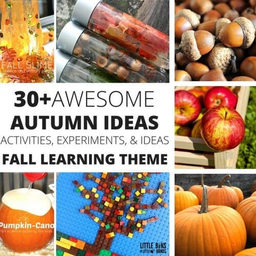 fall stem ideas and