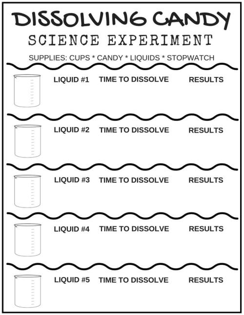 small resolution of Free Science Worksheets For Kids   Little Bins for Little Hands