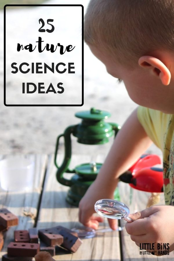 Preschool Stem Activities And Science Experiments Kids
