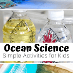 Ocean Science Activities For Preschoolers And Beyond Little Bins For Little Hands