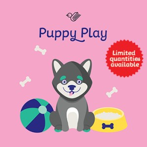 Puppy play book box - limited stock!