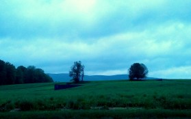 "Richard Serra's ""Schunnemmunk Fork,"" 1990-1, as one entity. they were pretty stunning."