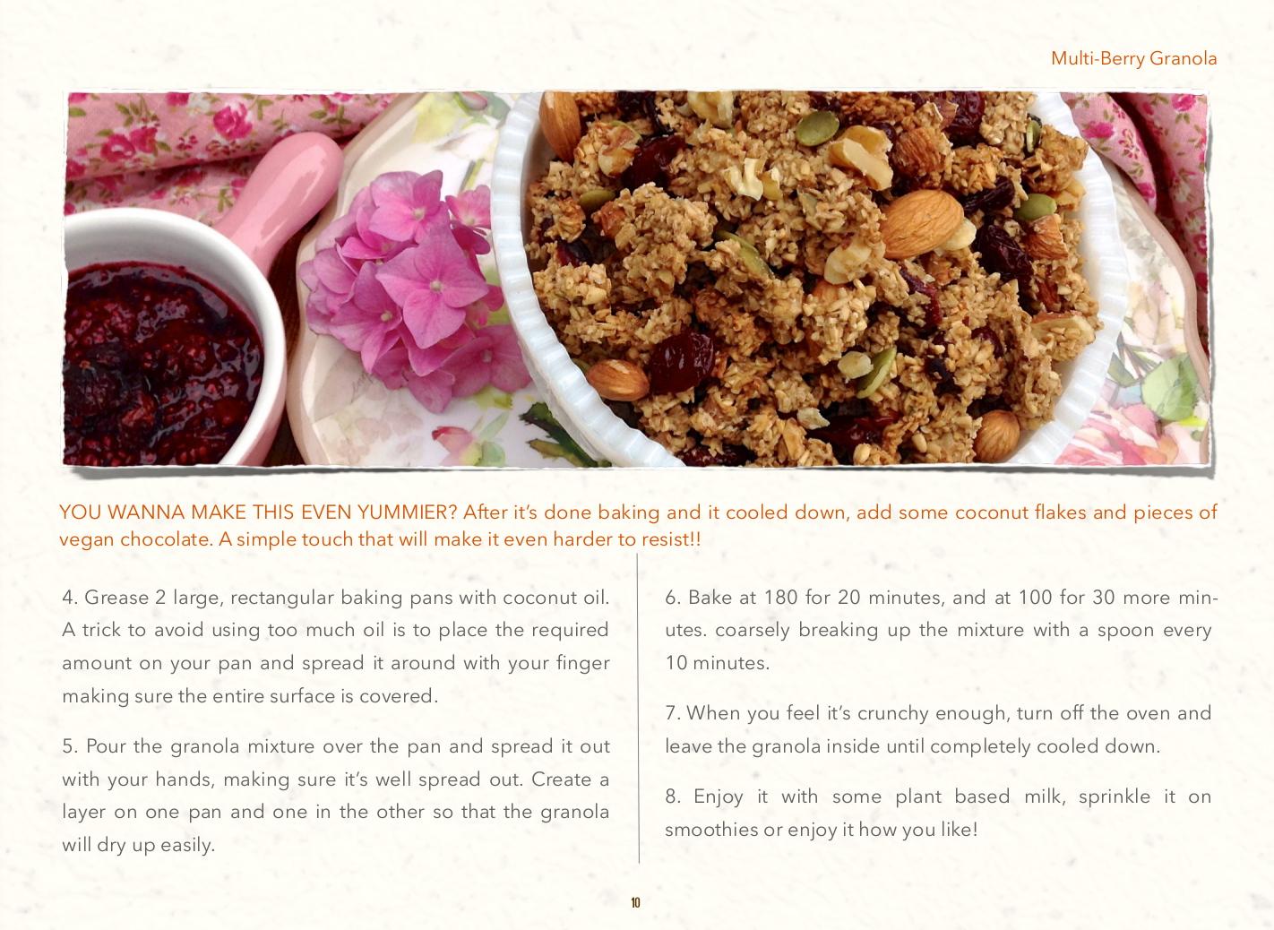 paleo gluten sugar dairy aip recipes multi berry grandola 3