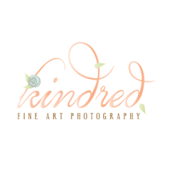 little bit heart | branding design, logo and website design - maryland fine art photography, lifestyle photographer - kindred art photography