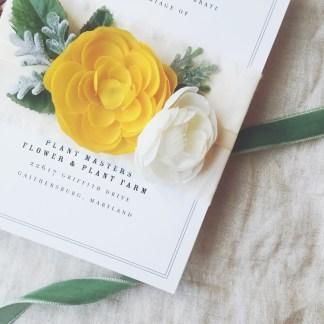 irl_littlebitheart-floralbellyband