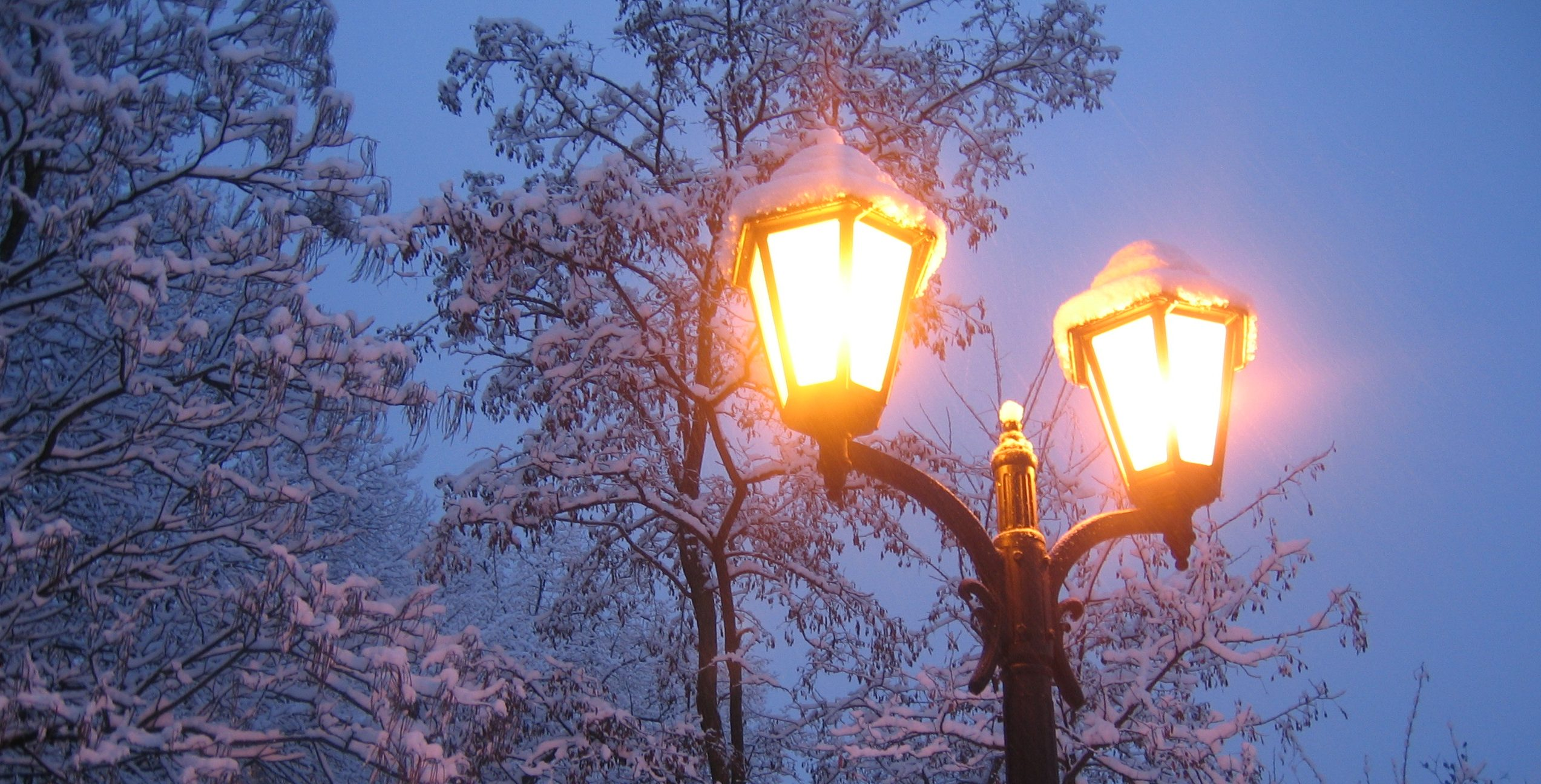 Leuke dingen in de winter in Utrecht