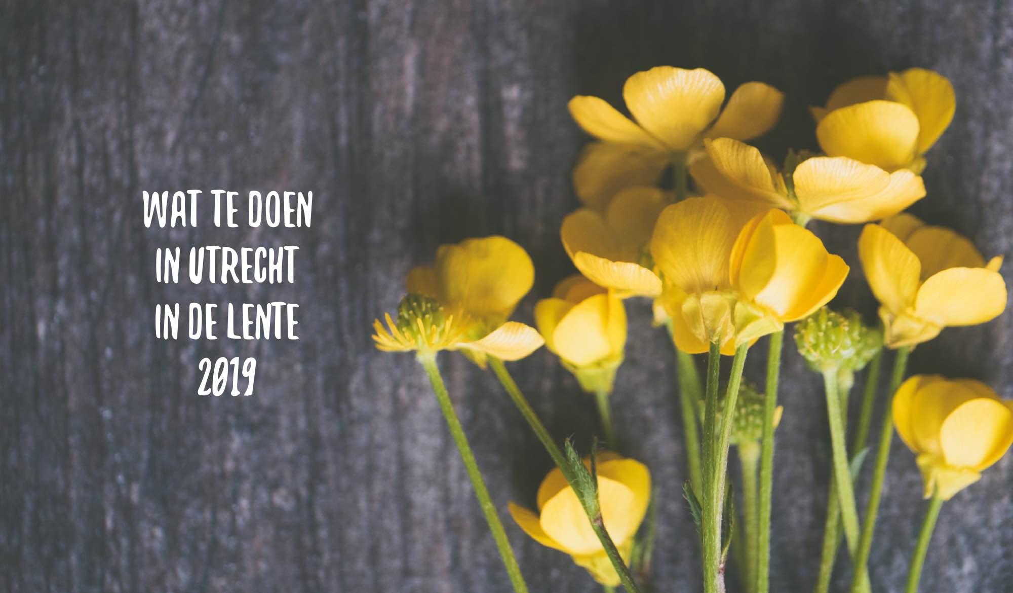 Wat te doen in Utrecht in de lente 2019