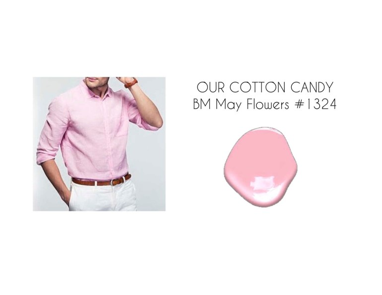 Our Cotton Candy.jpg