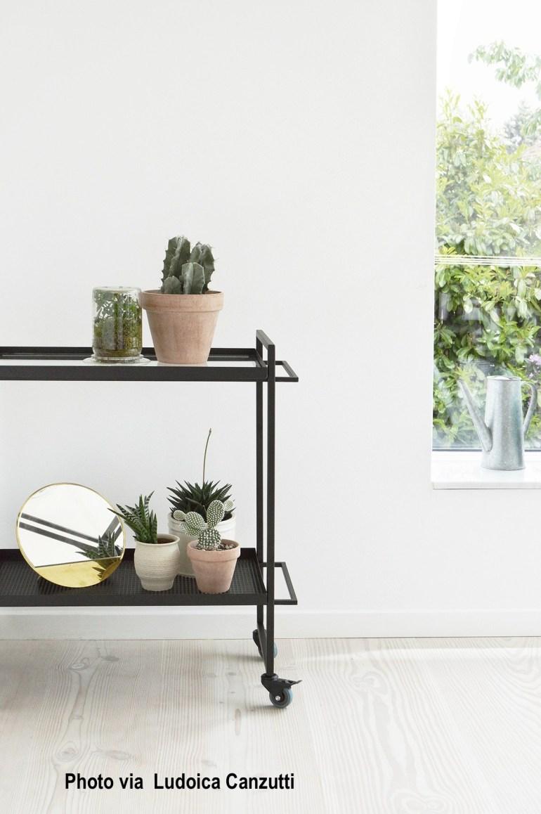 Danish Design Bar Cart, Succulents, White Washed Floor
