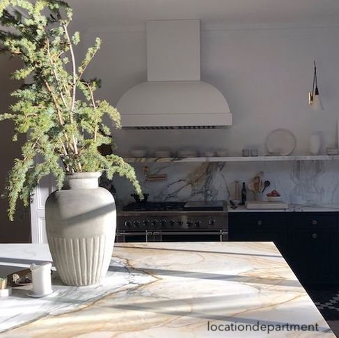 location department-marble-countertops-sunlight-natural-greenery-range-hood