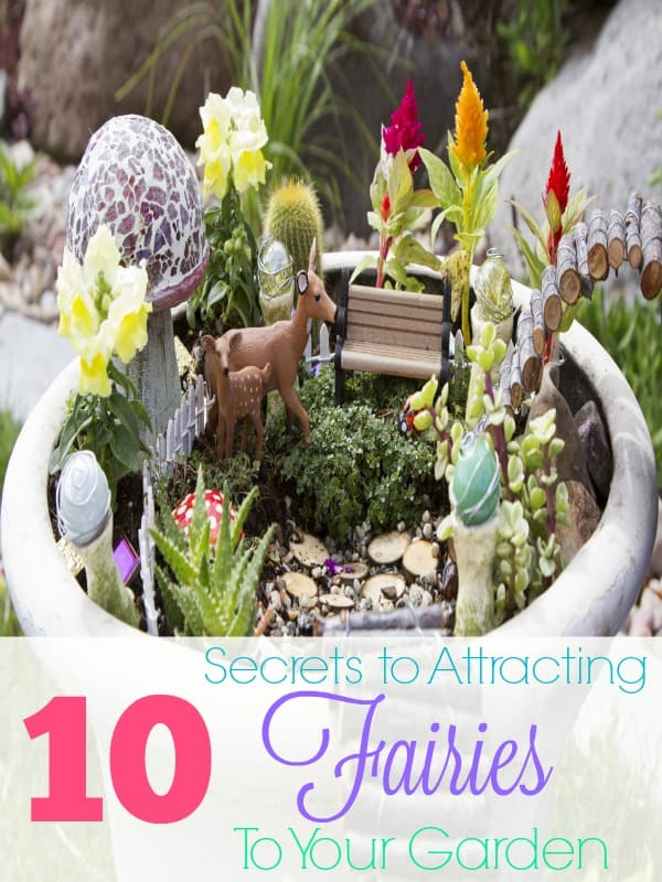 10 Secrets to Attracting Fairies