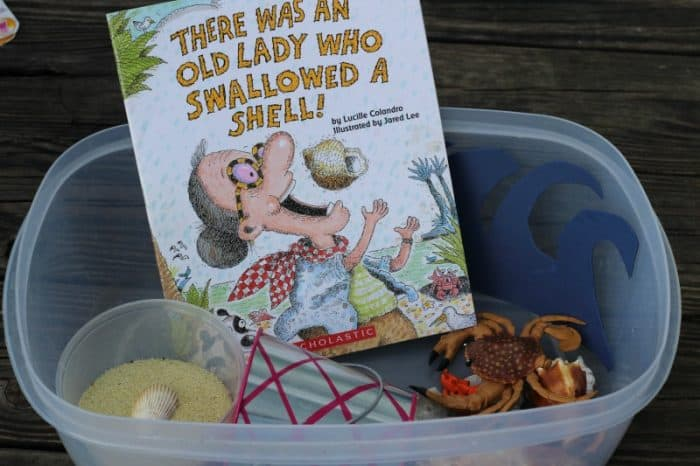 There Was an Old Lady Who Swallowed a Shell book activities