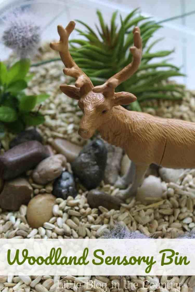 Simple Woodland Animal Sensory Bin