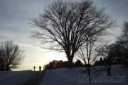 winterscene