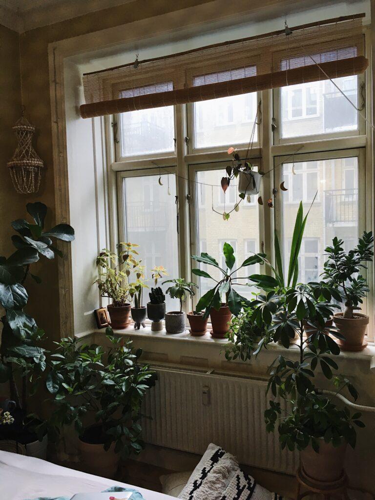 planter klar til foråret