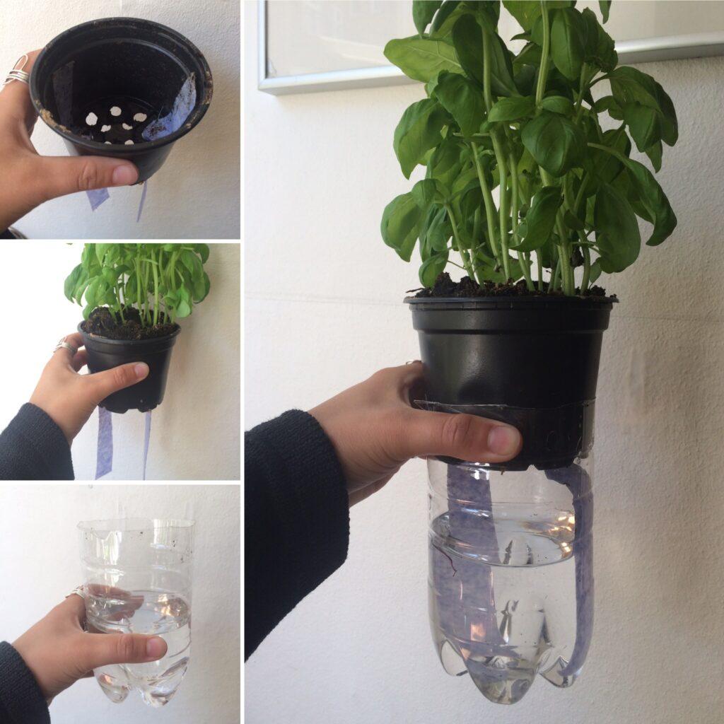 selvvanding få planterne til at overleve ferien