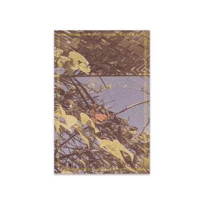 Flutter – Phone Wallpaper