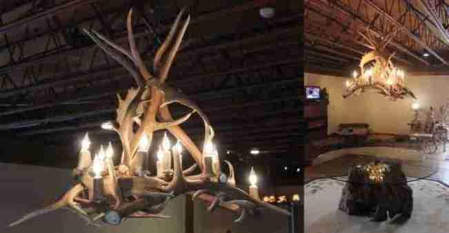 Rustic fallow and elk chandelier