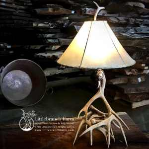 Mule deer antler lamp with rawhide shade