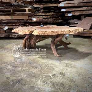 Live edge maple burl wood coffee table with juniper log base.