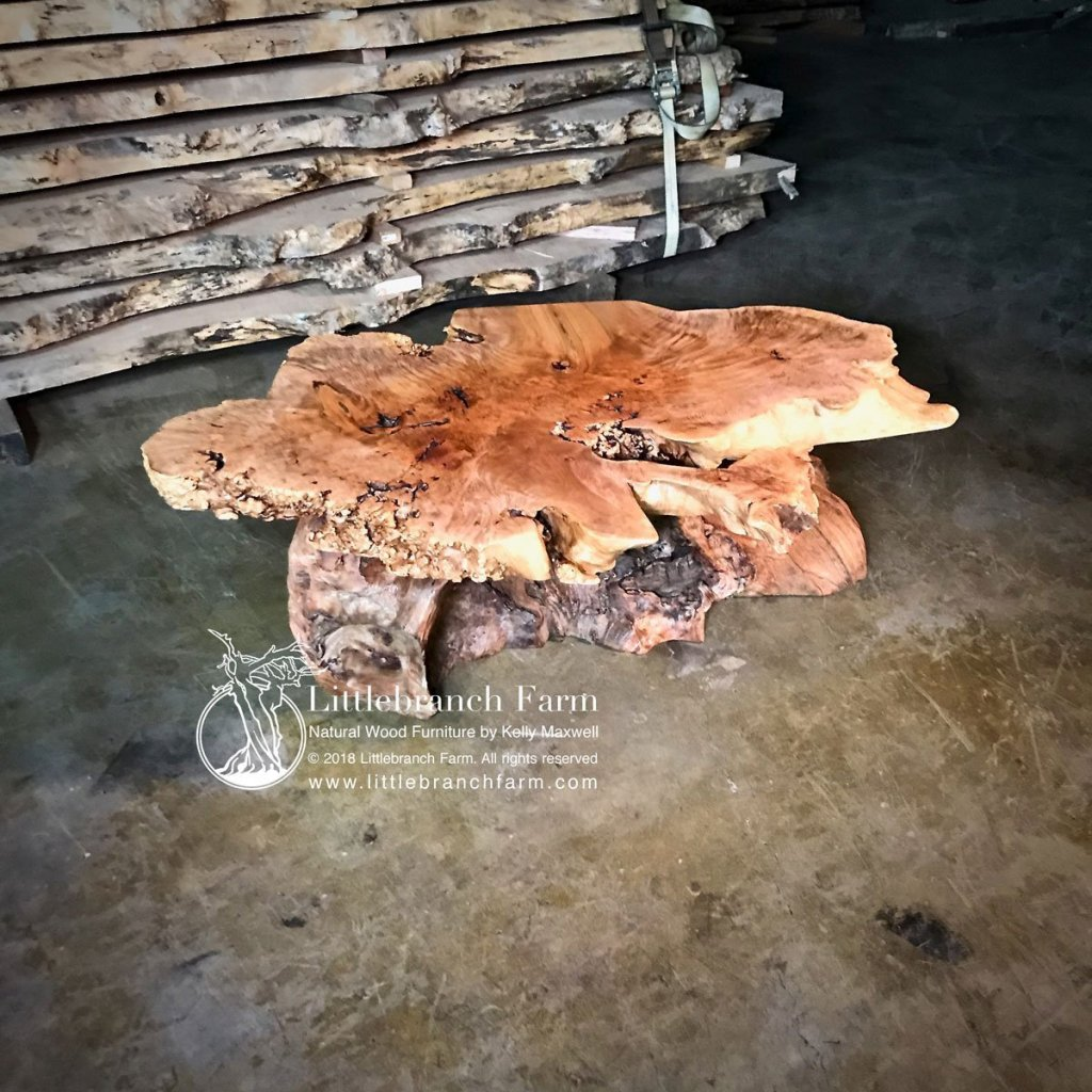 Maple burl Live edge table