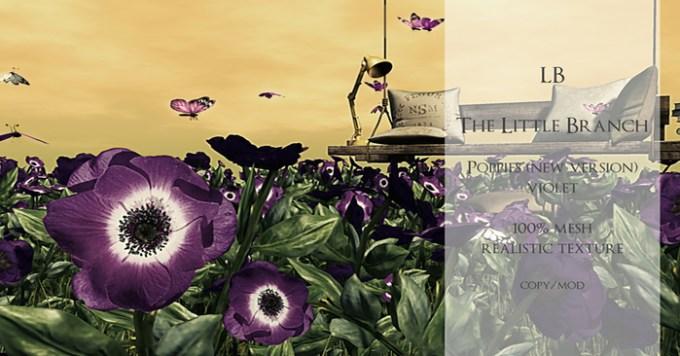 lb-mp-newpoppiesviolet