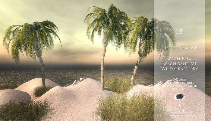 Little Branch Beach Palm