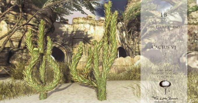 lb_cactus_v1