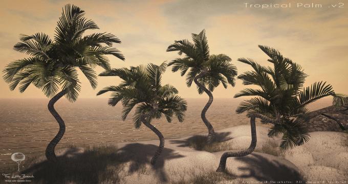 Tropicalpalm.v2
