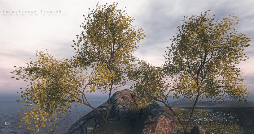 ForestPansyTree.v2