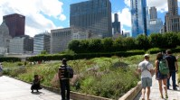 The Chicago skyline from a beautiful garden behind the Art Institute.