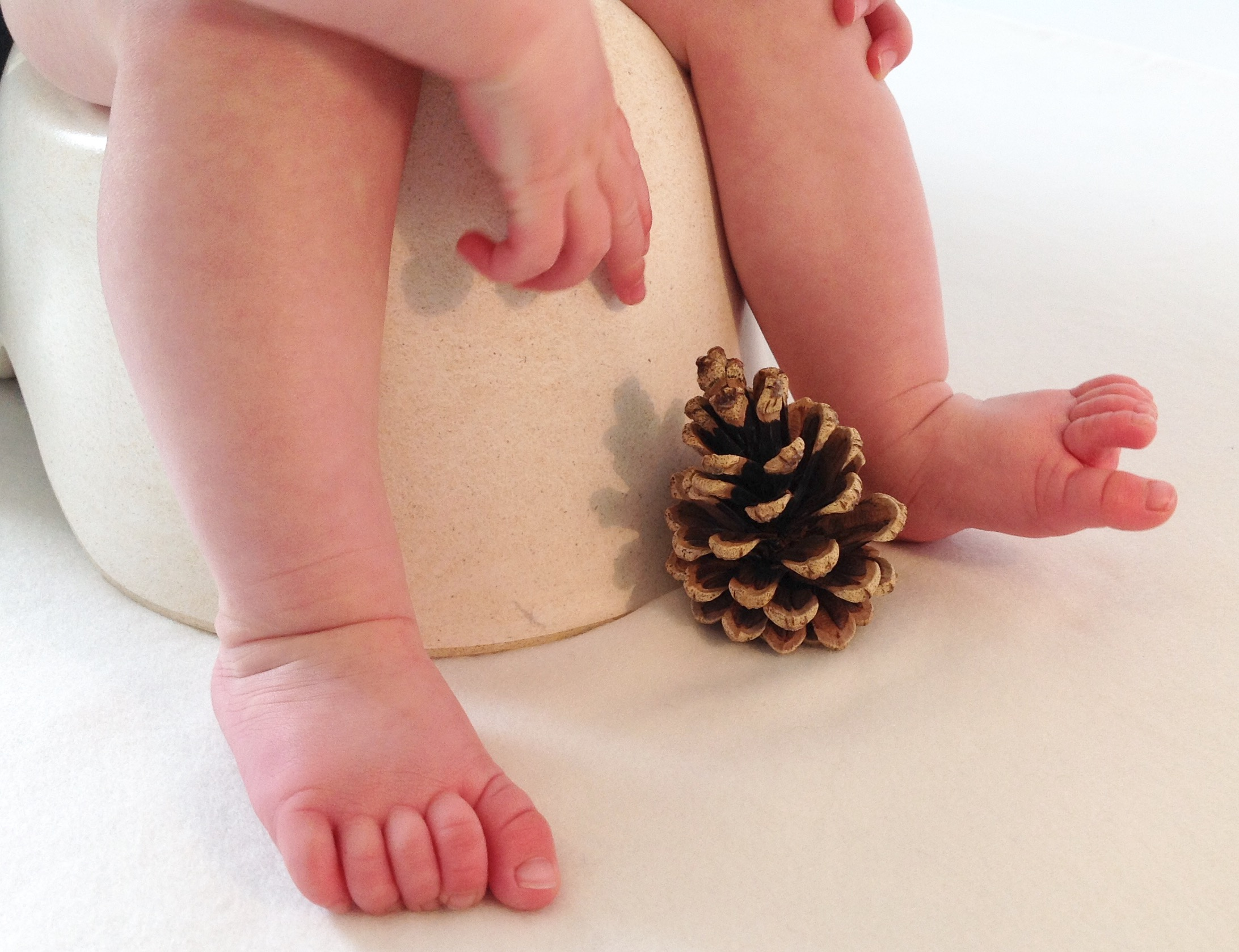 The dangers of early potty training: do they really exist? |