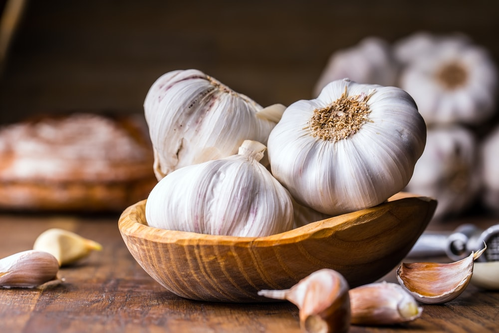 boost immune system garlic-min