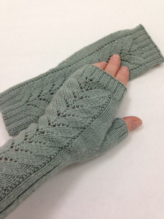 Barn Swallow Fingerless Mitts
