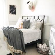 Nursery and Guest Bedroom Design