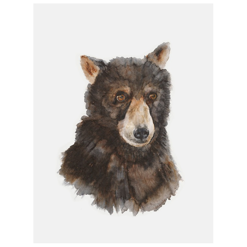 baby bear art canvas