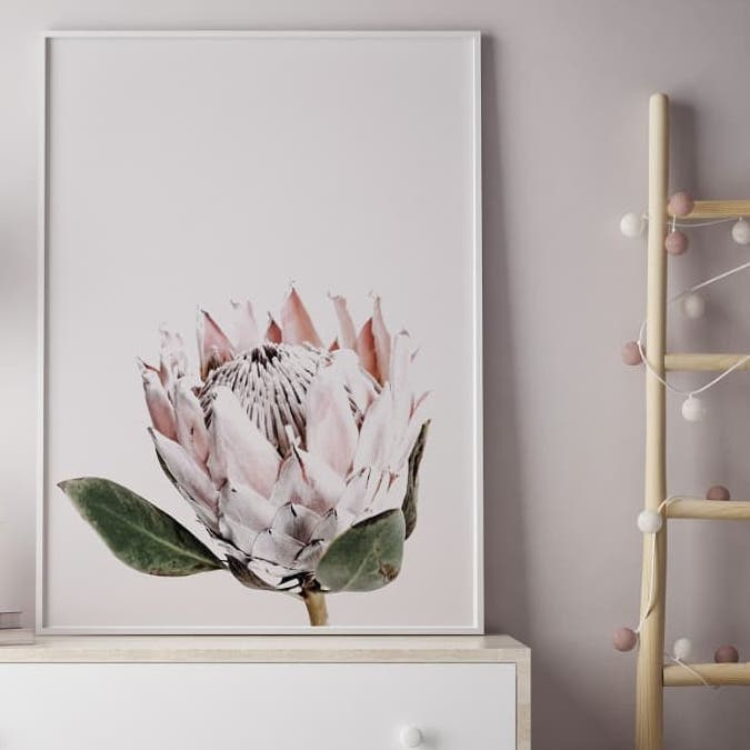 Pink Protea Floral Print | Little Crown Interiors Shop
