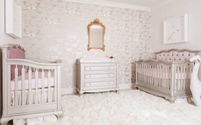Design Reveal: Traditional Butterfly Nursery for Twins