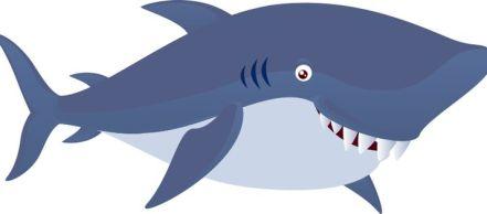 I like my sharks extra cute.