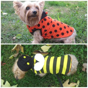 Dogo Pet Fashion reversible bumblebee ladybug dog hoodie