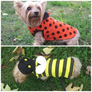 Dogo Pet Fashion reversible bumblebee ladybug dog hoodie