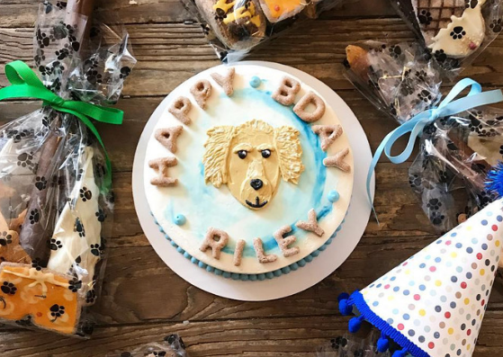South Philly Pet Store Celebrates 4th Anniversary Along East Passyunk Avenue