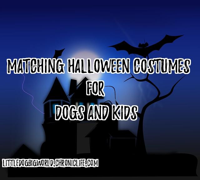matching costumes dogs kids