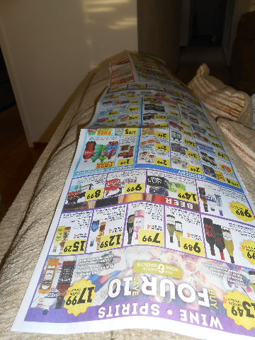newspaperon couch