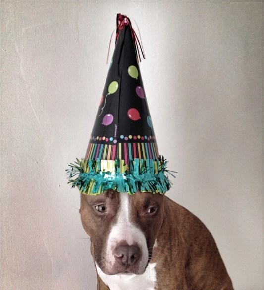 Happy Birthday jack
