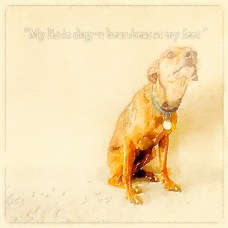 My Little Dog-Waterlogue