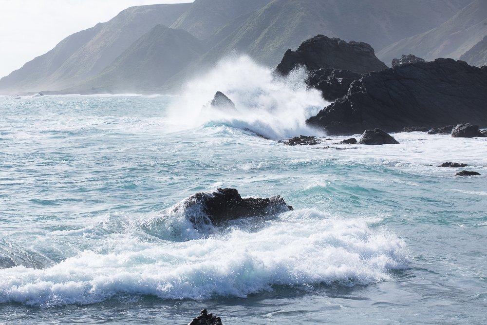 Cape Palliser in Wairarapa, New Zealand is a fabulous spot for seal watching.
