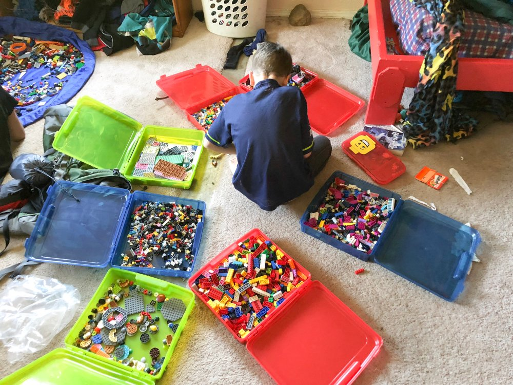 Apollo loves to spread out his organized lego bricks to play.