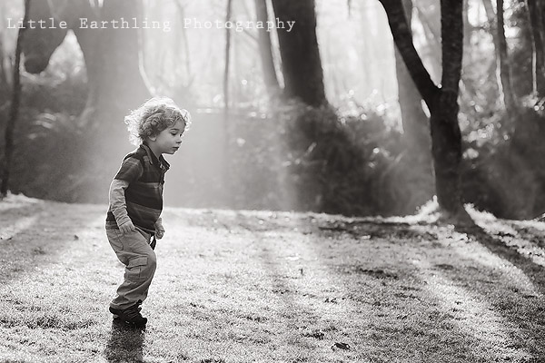 little earthling photography, bellingham photographer, bellingham custom photographer